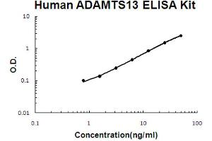Image no. 1 for ADAM Metallopeptidase with Thrombospondin Type 1 Motif, 13 (ADAMTS13) ELISA Kit (ABIN6719981)