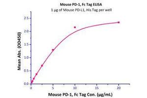 Image no. 2 for Programmed Cell Death 1 (PDCD1) (AA 25-167) (Active) protein (Fc Tag) (ABIN2181617)
