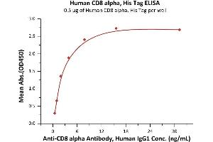 Image no. 3 for CD8a Molecule (CD8A) (AA 22-182) (Active) protein (His tag) (ABIN7013444)