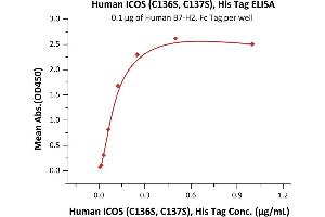 Image no. 1 for Inducible T-Cell Co-Stimulator (ICOS) (AA 21-141) (Active) protein (His tag) (ABIN6388254)