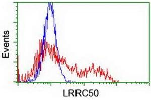 Image no. 3 for anti-Leucine Rich Repeat Containing 50 (LRRC50) antibody (ABIN1499205)