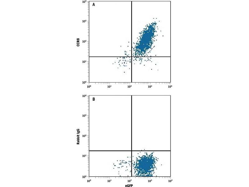 Flow Cytometry (FACS) image for anti-Chemokine (C-C Motif) Receptor 8 (CCR8) antibody (Allophycocyanin) (ABIN4898229)