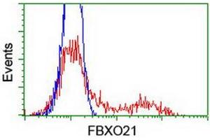 Flow Cytometry (FACS) image for anti-F-Box Protein 21 (FBXO21) antibody (ABIN2455351)