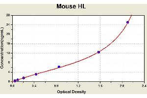 Image no. 1 for Lipase, Hepatic (LIPC) ELISA Kit (ABIN1115400)