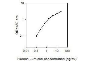 Image no. 1 for Lumican (LUM) ELISA Kit (ABIN4883685)