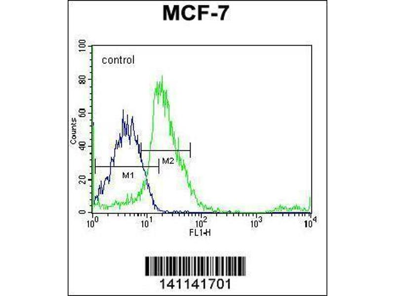 Flow Cytometry (FACS) image for anti-V-Src Sarcoma (Schmidt-Ruppin A-2) Viral Oncogene Homolog (Avian) (SRC) (AA 24-52), (N-Term) antibody (ABIN1881833)
