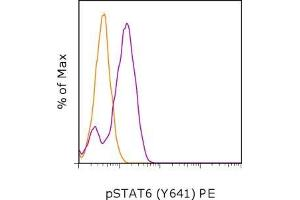 Flow Cytometry (FACS) image for anti-STAT6 antibody (Signal Transducer and Activator of Transcription 6, Interleukin-4 Induced) (pTyr641) (PE) (ABIN2681001)