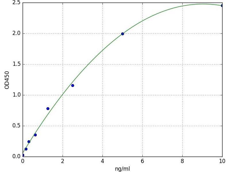 Linker For Activation of T Cells (LAT) ELISA Kit
