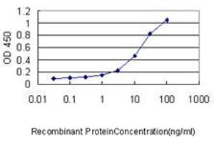 Image no. 2 for anti-Growth Factor Independent 1 (GFI1) (AA 1-92) antibody (ABIN466022)