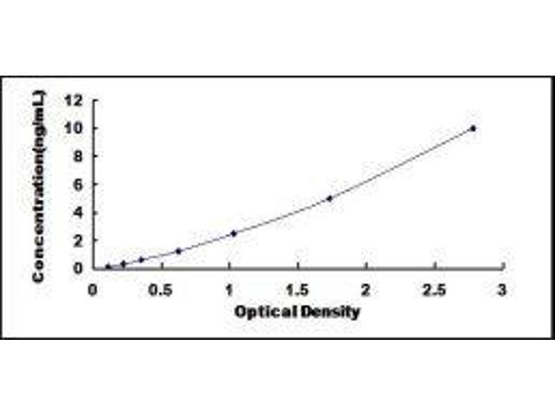 Diaphanous Homolog 1 (Drosophila) (DIAPH1) ELISA Kit