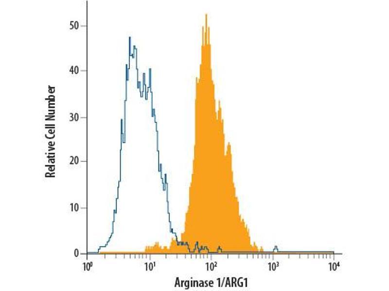 Flow Cytometry (FACS) image for anti-Arginase, Liver (ARG1) (AA 1-322) antibody (PE) (ABIN4897846)