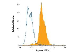 Flow Cytometry (FACS) image for anti-Arginase, Liver (ARG1) (AA 1-322) antibody (PE) (ABIN4897846)