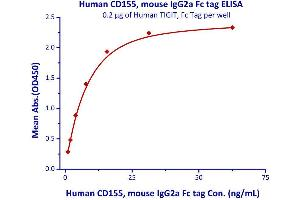 Image no. 3 for Poliovirus Receptor (PVR) (AA 21-343) (Active) protein (Fc Tag) (ABIN4949085)