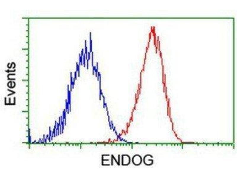 Flow Cytometry (FACS) image for anti-Endonuclease G antibody (ENDOG) (ABIN4308036)