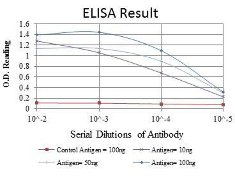 ELISA image for anti-BID antibody (BH3 Interacting Domain Death Agonist) (ABIN968979)