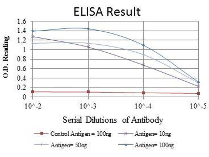 ELISA image for anti-BH3 Interacting Domain Death Agonist (BID) antibody (ABIN968979)