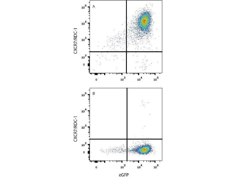 Flow Cytometry (FACS) image for anti-Chemokine (C-X-C Motif) Receptor 7 (CXCR7) (AA 1-362) antibody (ABIN4899095)