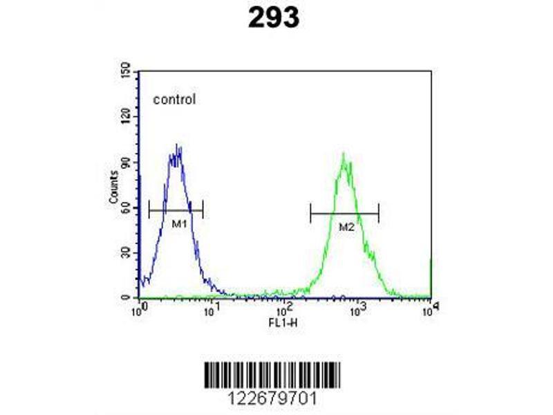 Flow Cytometry (FACS) image for anti-Vascular Endothelial Growth Factor C (VEGFC) antibody (ABIN650694)