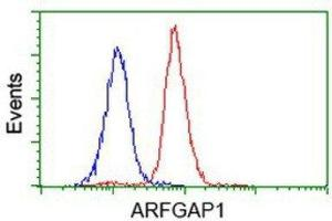 Flow Cytometry (FACS) image for anti-ADP-Ribosylation Factor GTPase Activating Protein 1 (ARFGAP1) antibody (ABIN4281365)
