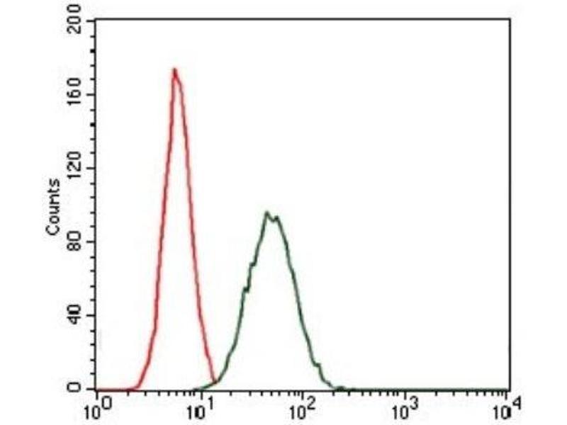 Flow Cytometry (FACS) image for anti-CCAAT/enhancer Binding Protein (C/EBP), alpha (CEBPA) antibody (ABIN4297605)