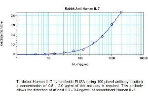 ELISA image for anti-IL7 antibody (Interleukin 7) (ABIN1686094)