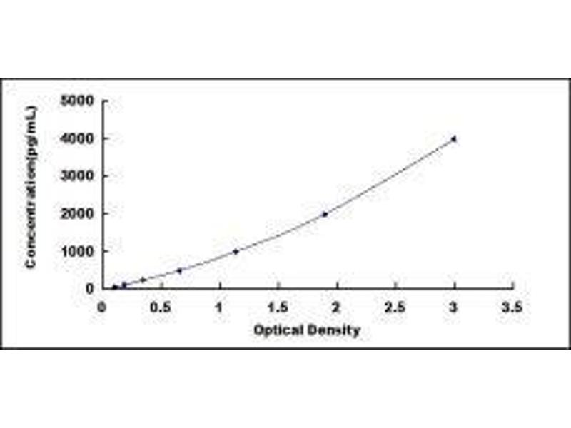 Growth Differentiation Factor 2 (GDF2) ELISA Kit (5)