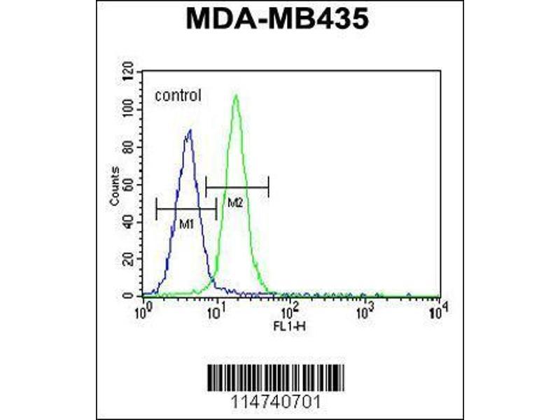 Flow Cytometry (FACS) image for anti-Lin-28 Homolog A (C. Elegans) (LIN28A) antibody (ABIN655496)