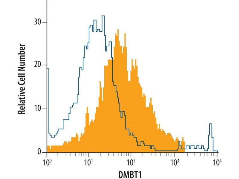 Flow Cytometry (FACS) image for anti-DMBT1 antibody (Deleted in Malignant Brain Tumors 1) (AA 215-420) (ABIN4899625)