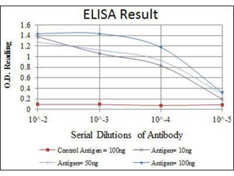 ELISA image for anti-MAP2K6 antibody (Mitogen-Activated Protein Kinase Kinase 6) (ABIN1843873)