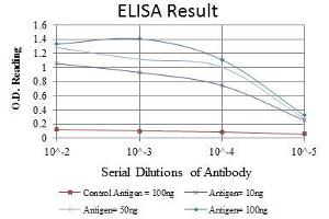 ELISA image for anti-AIFM1 antibody (Apoptosis-Inducing Factor, Mitochondrion-Associated, 1) (ABIN968950)