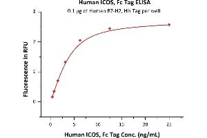 Image no. 1 for Inducible T-Cell Co-Stimulator (ICOS) (AA 21-141) (Active) protein (Fc Tag) (ABIN6809913)