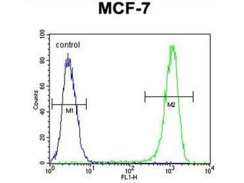 Flow Cytometry (FACS) image for anti-BCL10 antibody (B-Cell CLL/lymphoma 10) (AA 27-55) (ABIN950621)