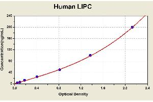Image no. 1 for Lipase, Hepatic (LIPC) ELISA Kit (ABIN1115783)