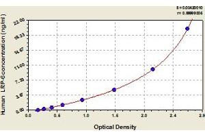 Image no. 1 for Low Density Lipoprotein Receptor-Related Protein 6 (LRP6) ELISA Kit (ABIN6973692)
