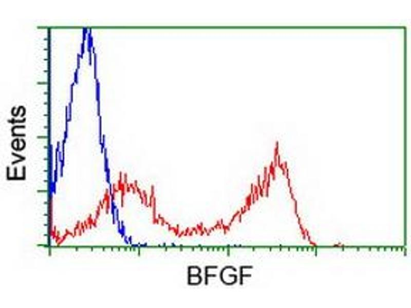 image for anti-Fibroblast Growth Factor 2 (Basic) (FGF2) (AA 10-155) antibody (ABIN1490784)