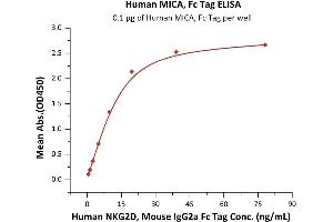 Image no. 1 for MHC Class I Polypeptide-Related Sequence A (MICA) (AA 24-308) (Active) protein (Fc Tag) (ABIN7013491)