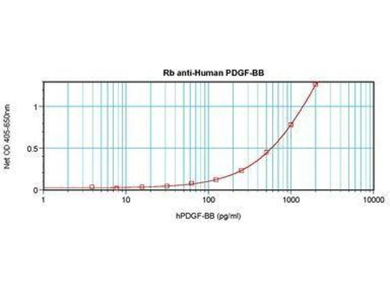 image for anti-Platelet Derived Growth Factor BB (PDGFBB) antibody (ABIN465589)