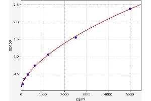 Image no. 1 for Cardiolipin Synthase (CLS) ELISA Kit (ABIN6965420)