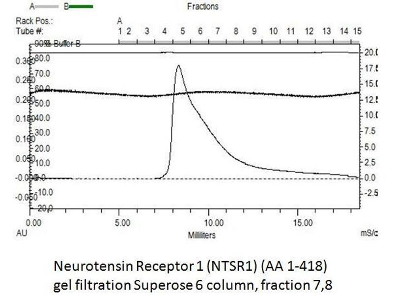 image for Neurotensin Receptor 1 (High Affinity) (NTSR1) (AA 1-418) protein (rho-1D4 tag,His tag) (ABIN3084600)