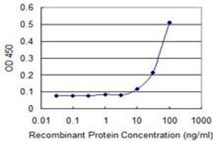 ELISA image for anti-RecQ Protein-Like (DNA Helicase Q1-Like) (RECQL) (AA 549-648), (partial) antibody (ABIN519722)