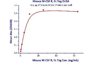 Image no. 1 for Colony Stimulating Factor 1 Receptor (CSF1R) (AA 20-511) (Active) protein (Fc Tag) (ABIN4949181)