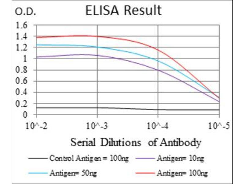 ELISA image for anti-Neural Precursor Cell Expressed, Developmentally Down-Regulated 8 (NEDD8) antibody (ABIN1846663)