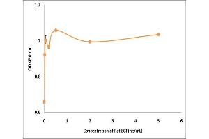 Image no. 1 for Epidermal Growth Factor (EGF) (Active) protein (ABIN5509414)