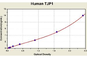 Image no. 2 for Tight Junction Protein 1 (Zona Occludens 1) (TJP1) ELISA Kit (ABIN1117497)