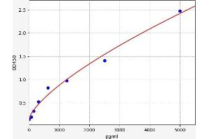 Image no. 1 for Nuclear Receptor Subfamily 2, Group C, Member 2 (NR2C2) ELISA Kit (ABIN6969018)