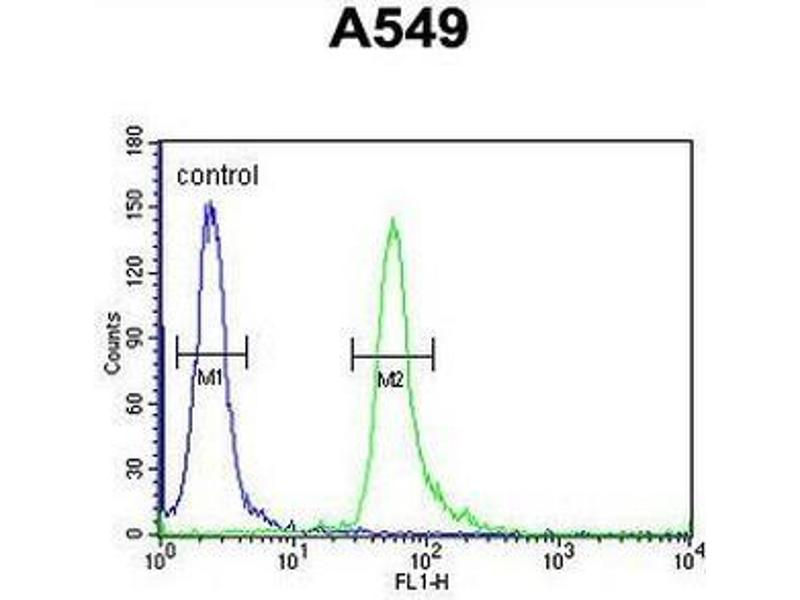 Flow Cytometry (FACS) image for anti-T-Cell Activation rho GTPase-Activating Protein (TAGAP) (AA 103-129), (Middle Region) antibody (ABIN955071)