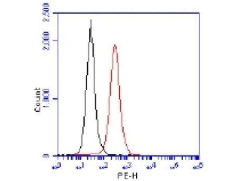Flow Cytometry (FACS) image for anti-TP53BP1 antibody (Tumor Protein P53 Binding Protein 1) (AA 350-400) (ABIN151770)