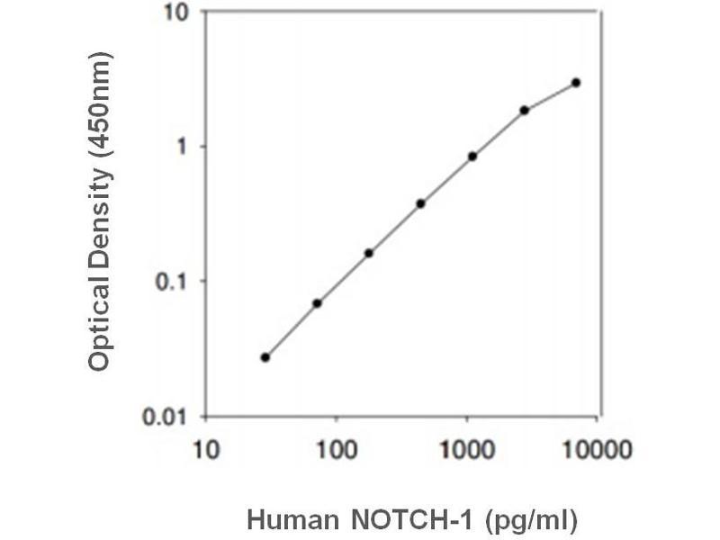 Notch 1 (NOTCH1) ELISA Kit
