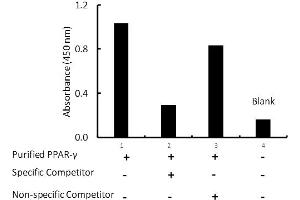Image no. 1 for Peroxisome Proliferator-Activated Receptor gamma (PPARG) ELISA Kit (ABIN5690762)