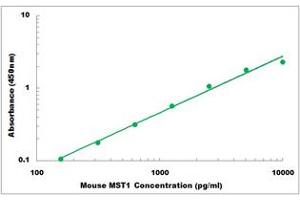 Image no. 1 for Macrophage Stimulating 1 (Hepatocyte Growth Factor-Like) (MST1) ELISA Kit (ABIN2708578)